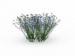 Flowering grass plants 3d model