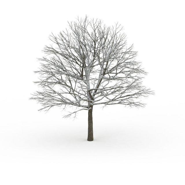 Image result for background images of food