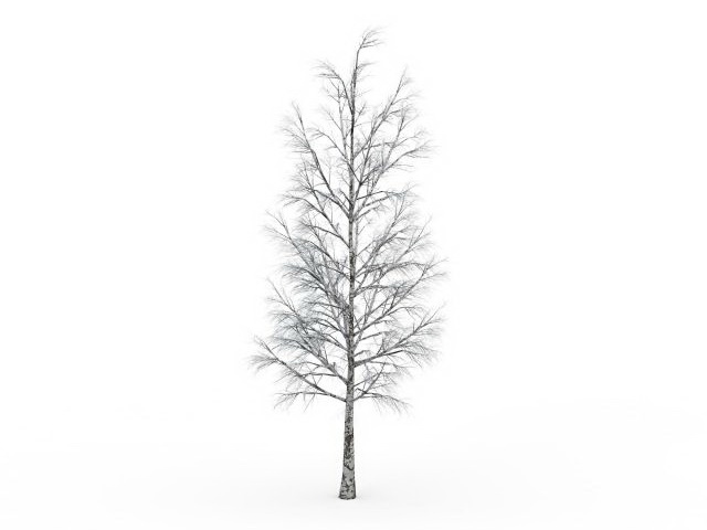 winter birch tree 3d model 3ds max files free download