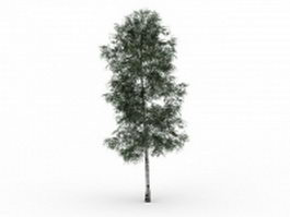 Chenmou elm tree 3d preview