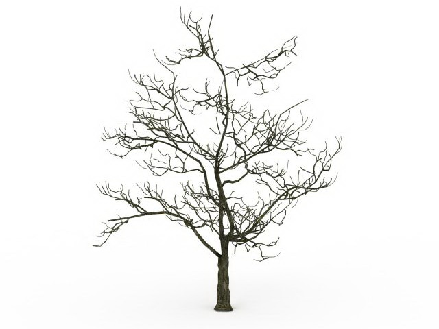 old tree in winter 3d model 3ds max files free download