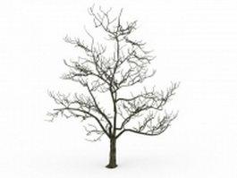 Old tree in winter 3d model