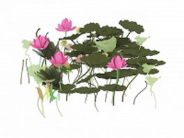 Lotus flowers and leaves 3d preview