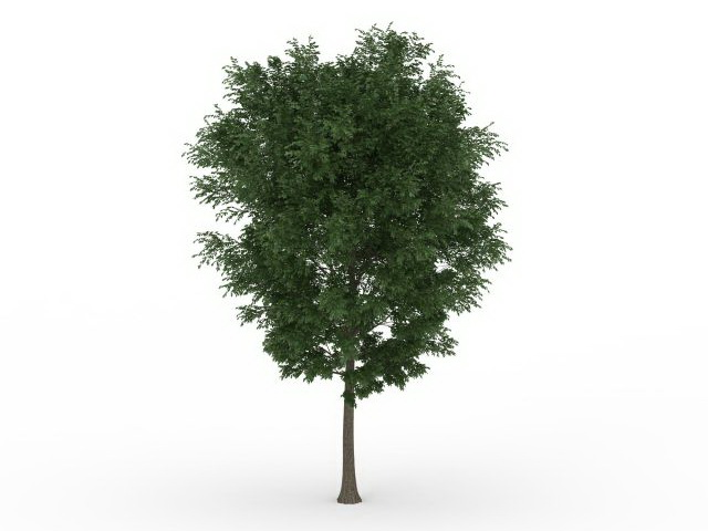 Beautiful Green Tree 3d Model 3ds Max Files Free Download