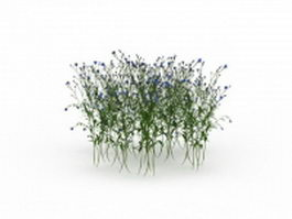 Flowering shrubs 3d model