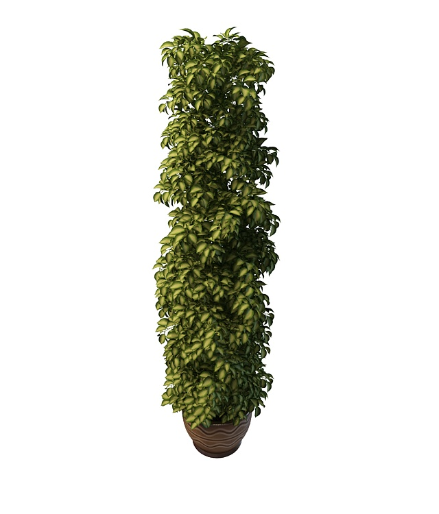 Tall Potted Plants tall potted plant 3d model 3ds max files free download - modeling