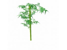 Green bamboo stem with leaves 3d model