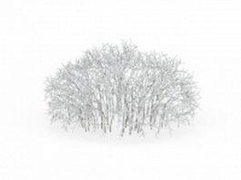 Pretty snow covered shrubs 3d model