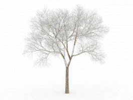 Bare tree in snow 3d model
