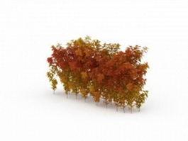 Autumn shrubs hedge 3d model
