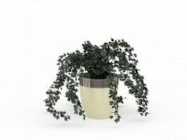 Potted ivy plants 3d model