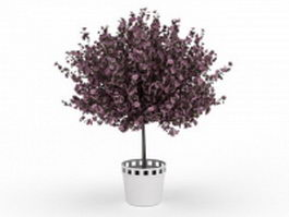Blooming purple plant in pot 3d model