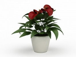 Potted flamingo flower 3d model