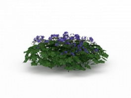 Herb plant with purple flowers 3d model