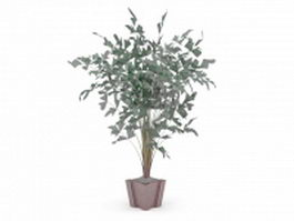 Pot palm plant 3d model