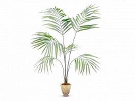 Kentia palm tree in pot 3d model