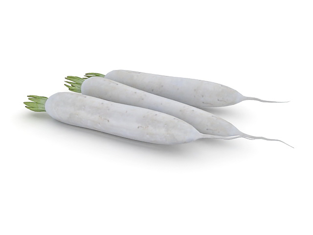 White Radish Root 3d Model 3ds Max Files Free Download