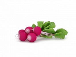 Radishes with leaves 3d model