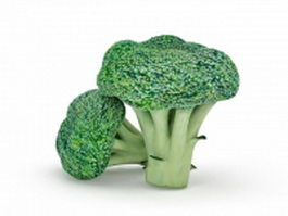 Broccoli vegetable 3d model