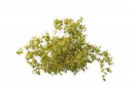 Wild plant with yellow berries 3d model
