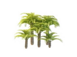 cadnav-1512221Z4260-L Palm Tre Tropical Houseplants on tropical palm trees at night, tropical palm fruits, tropical palm leaves, tropical palm garden, tropical palm landscape, tropical palm lawn care, tropical palm plants, tropical palm flower, tropical palm trees types, tropical palm hedges, tropical palm art,