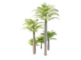 Alexandra palm trees 3d model