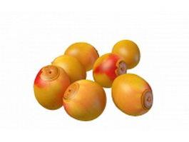 Ripe mango fruit 3d model