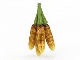 Harvest corn maize 3d model