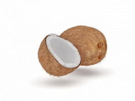 Cut open coconut 3d model
