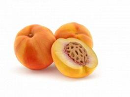 Autumn red peaches 3d model