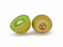 Fuzzy kiwifruit and cross section 3d model
