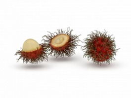 Rambutan fruits and peeled rambutan 3d model