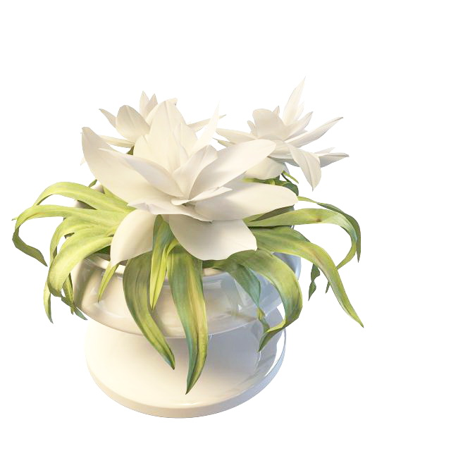 Lily Flowers In Vase 3d Model 3ds Max Files Free Download