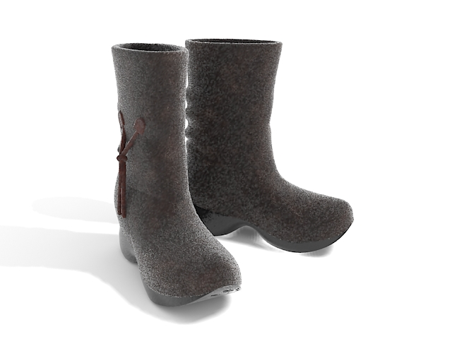 Ladies dress boots 3d rendering