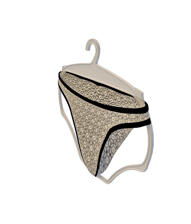 Underwear panties 3d rendering