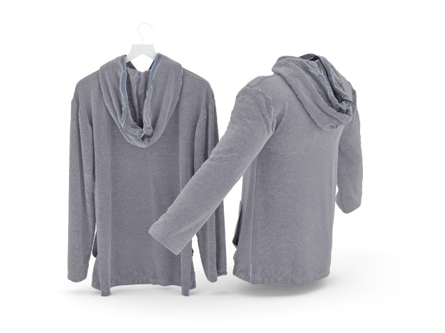 Hooded sweatshirt 3d rendering
