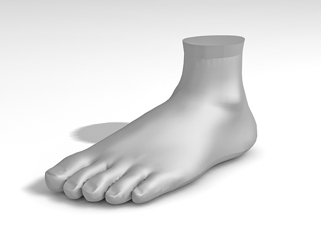 Foot Mannequin 3d Model 3ds Max Files Free Download