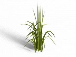Bent grass 3d model
