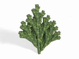 Green Acropora coral 3d model