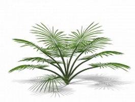 Decorative palm tree 3d model