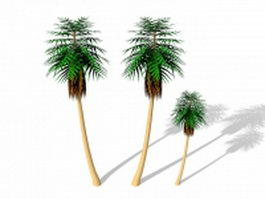 Palm trees 3d preview