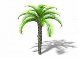 Queen sago palm 3d model