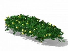 Flowering ground cover plants 3d model
