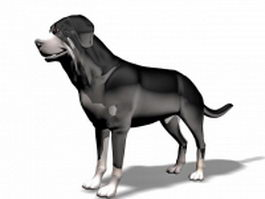 Big black dog 3d model