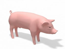 Domesticated pig 3d model