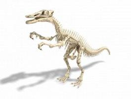 Shantungosaurus dinosaur skeleton 3d model