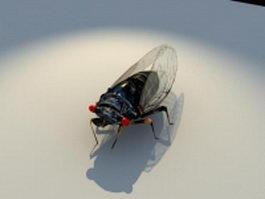 Annual cicada 3d model