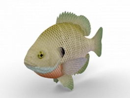Bluegill fish 3d model
