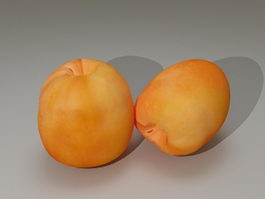 Apricot Fruit 3d model