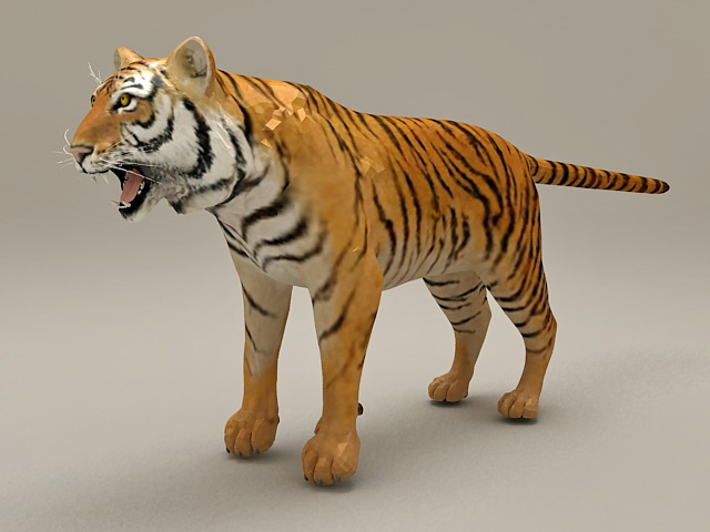 Royal Bengal Tiger 3d model
